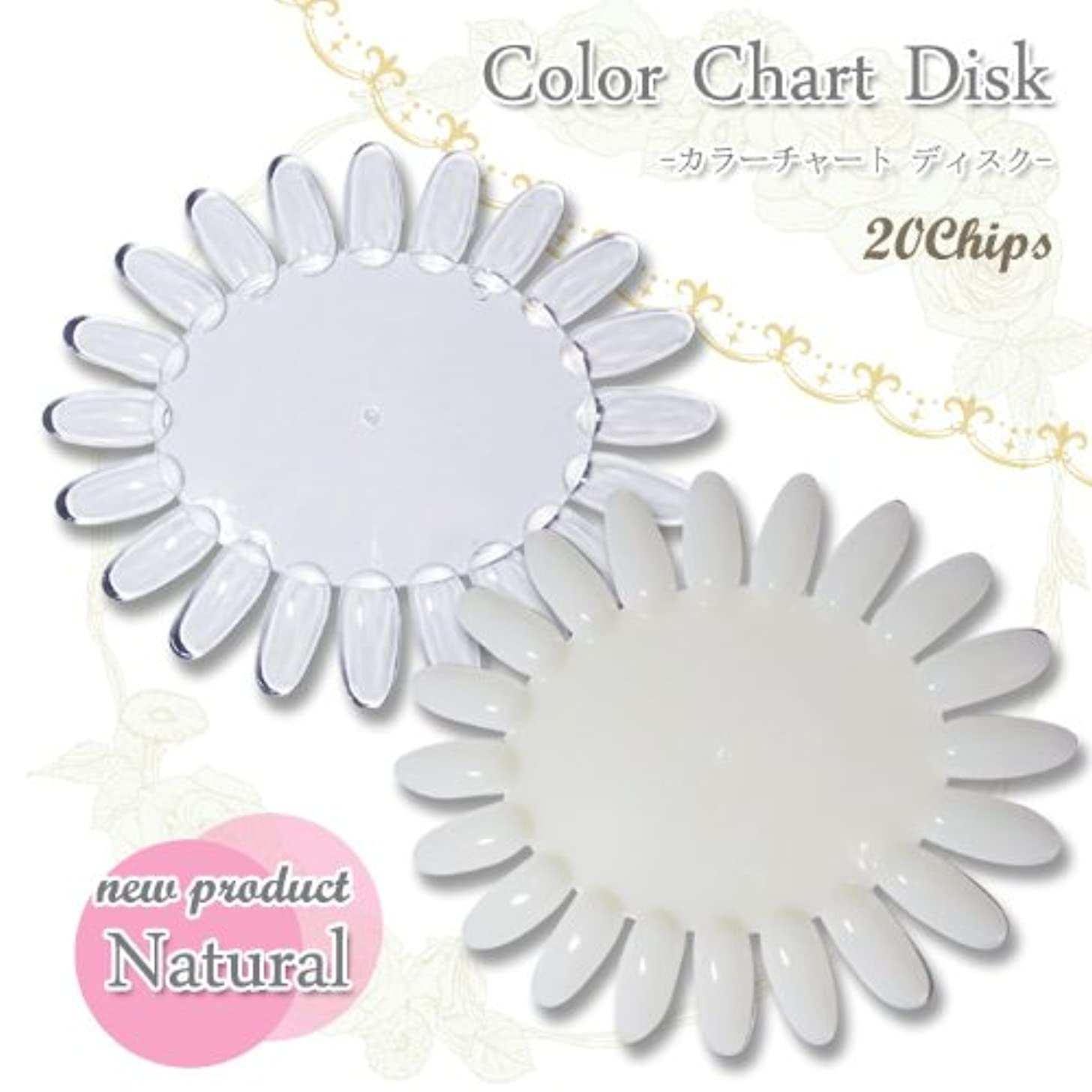 なに塗抹大きい【ネイルツール】カラーチャートディスク〈 20色用 〉カラー見本作成の必需品! (クリア)