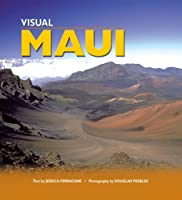 Visual Maui
