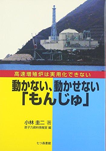動かない、動かせない「もんじゅ」—高速増殖炉は実用化できない