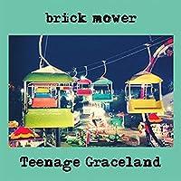 Teenage Graceland [Analog]