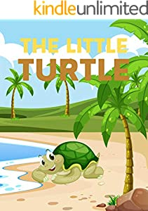The Little Turtle: Books for kids, Bedtime story, Fable Of  The Little Turtle, tales to help children fall asleep fast. Animal Short Stories, By Picture Book For Kids 2-6 Ages (English Edition)