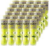 DUNLOP(ダンロップ) プレッシャーライズド FORT(フォート)[4個入]1箱(30缶/120球)テニスボール