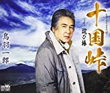 十国峠/詫び椿