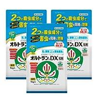 住友化学園芸 オルトランDX粒剤 1kg×3個