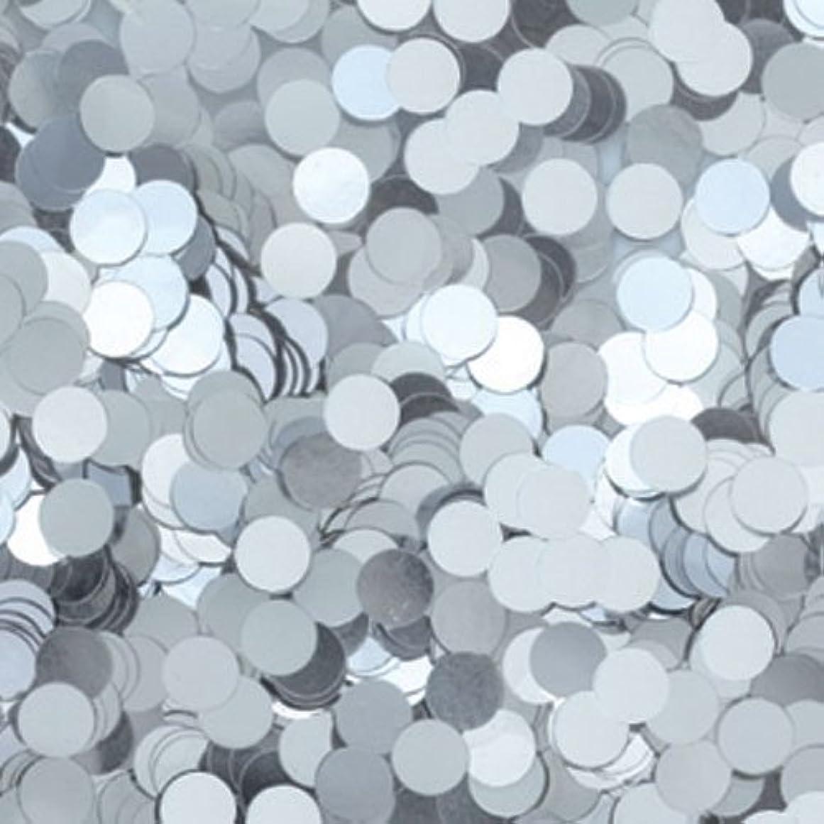 ネコ寛大な使用法ピカエース ネイル用パウダー 丸メタリック 耐溶剤 1mm #551 シルバー 0.5g