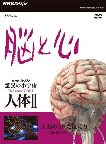 NHKスペシャル 驚異の小宇宙 人体II 脳と心 第5集 秘められた復元力~発達と再生~ [DVD]の詳細を見る