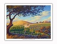オーク・バレー・ヴィンヤード - ワインカントリーアート によって作成された カーン・エリクソン - アートポスター - 28cm x 36cm
