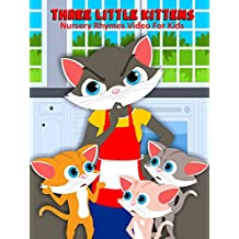 Three Little Kittens - Nursery Rhymes Video For Kids