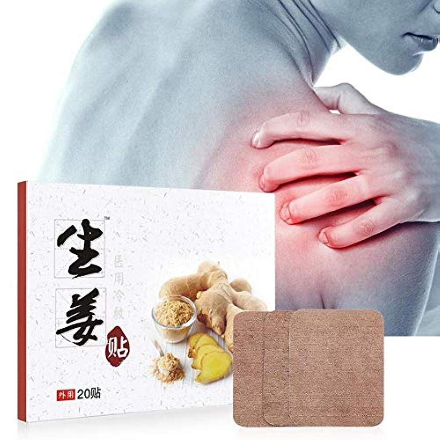 麻酔薬破壊グラス20ボックスジンジャーパッドジョイント頚椎痛みの軽減自発的ヒートステッカー防寒保温
