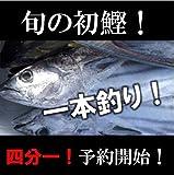 旬の初鰹[築地直送]一本釣りカツオ!四分一 1-2kg/尾 高知・千葉・三重他 初ガツオ