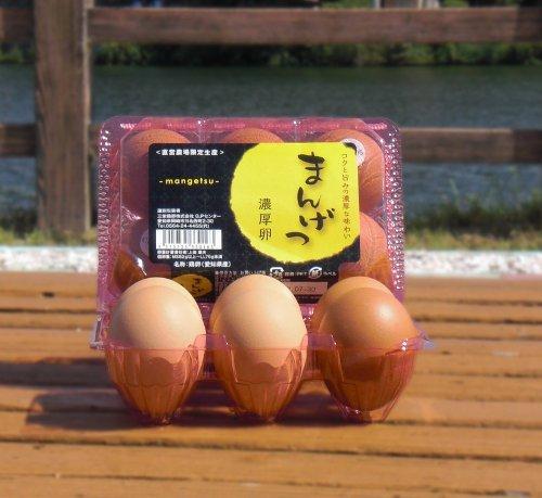 まんげつ濃厚卵 6個入り1パック (「三河濃厚卵 満月」は、「まんげつ濃厚卵」に生まれ変わりました)