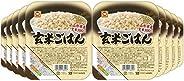 玄米ごはん 160g×10個