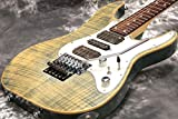 Schecter/SD-II-24-AS/KC HSH シェクター