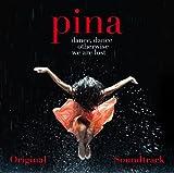 Pina 画像