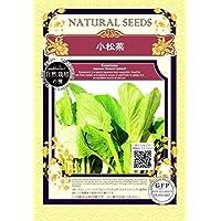小松菜 こまつな/自然栽培 の 種 種子/グリーンフィールド/葉菜 [小袋]