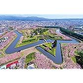 1000ピース ジグソーパズル めざせ! パズルの達人 五稜郭の桜景色-北海道(50x75cm)