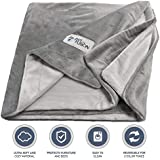 PetFusion Premium Small Dog or Cat Blanket (31x27). Reversible Gray Micro Plush. [100% Soft Polyester]