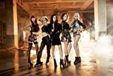 タイトル未定 (MINI ALBUM+DVD)