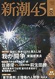 新潮45 2009年 08月号 [雑誌]