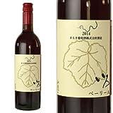 山梨ワイン 赤 ミディアムライト ベーリーA アリカント まるき葡萄酒 いろベーリーA