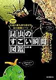 昆虫のすごい瞬間図鑑:一度は見ておきたい!公園や雑木林で探せる命の躍動シーン