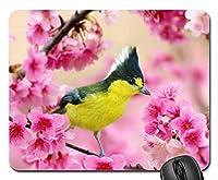 美しいかっこいい鳥のマウスパッド、スプリングマウスパッド、マウスパッド