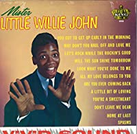 Mister Little Willie John [VINYL LP]