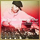 Mix the Vibe: Terrence Parker