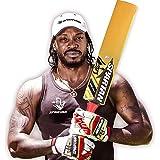 Spartan Youth-Unisex S6R Kashmir Willow Cricket Bat - Pink, Size 5