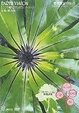 リラクゼーション映像詩集(EARTH VISION) 熱帯性植物紀行 インド カンボジア タイ マレーシア [DVD]