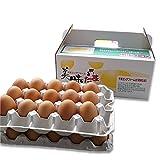 ブログ に 書きたくなる 超濃厚 卵 養鶏場 直送 美味たま(30個)