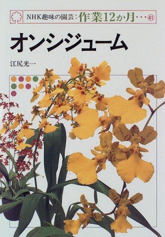 オンシジューム (NHK趣味の園芸・作業12か月)