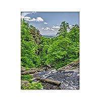 ストリームの緑の森林科学は自然の風景 台所のタイルタイルが装飾を飾る