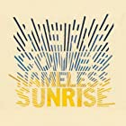 HERE COMES NAMELESS SUNRISE(初回限定盤)(DVD付)()