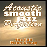 Acoustic Smooth Jazz Perfection【CD】 [並行輸入品]