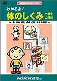 わかるよ! 体のしくみ 小学生の理科 (DVDビデオ) (わかるよ! シリーズ)