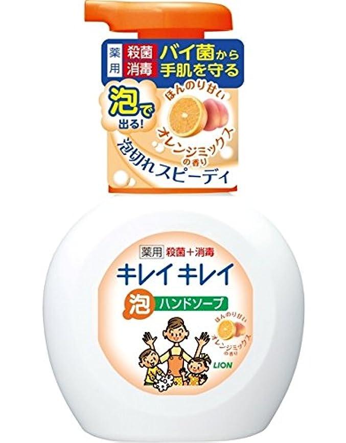 ごみゴール実り多いキレイキレイ薬用泡ハンドソープオレンジミックスの香りポンプ250mL