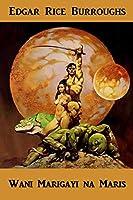 Wani Marigayi Na Mars: A Princess of Mars, Hausa Edition