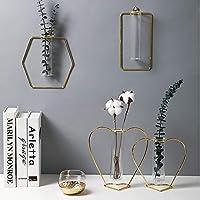 Hbgnsm 金色の壁掛け壁掛け花瓶水耕栽培の背景壁メタルライト高級リビングルームの寝室 実用的 (Shape : Diamant)
