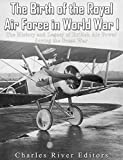 The Birth of the Royal Air Force in World War I: The History and Legacy of British Air Power during the Great War (English Edition)