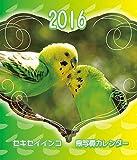 セキセイインコ鳥写真カレンダー  2016 (CDサイズ。ワンタッチで卓上にも壁掛けにもなる3Wayカレンダー)