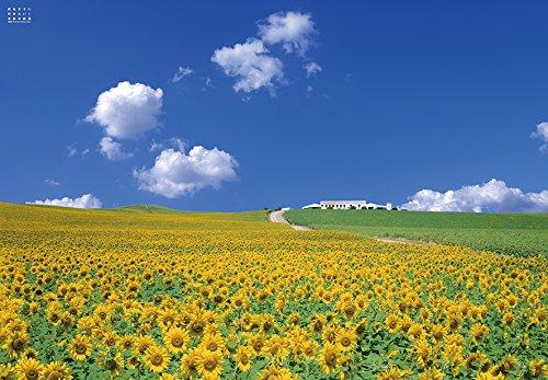 1000ピース ジグソーパズル 死ぬまでに行きたい! 世界の絶景 アンダルシアのひまわり畑(スペイン)(51x73.5cm)