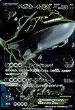 ポケモンカード XY11-056-SR 《ハガネールEX》