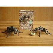 地球生命紀行 アリ 素晴らしき ミクロの世界 人気 2種 昆虫 蟻 全2種 1 クロオオアリ(女王アリ)約65ミリ2