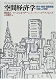 空間経済学―都市・地域・国際貿易の新しい分析 画像