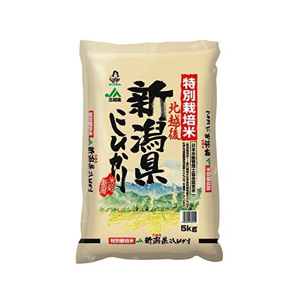 【精米】新潟県 北越後産 特別栽培米 白米 こし...の商品画像