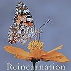 Reincarnation (TYPE B)(在庫あり。)