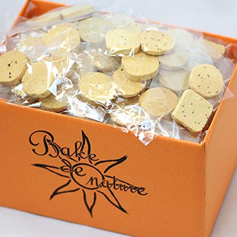 避難学校教育ペンフレンドスーパーフード豆乳おからクッキー (10種類MIX) 1袋 1kg (個包装) 小麦粉不使用のダイエットクッキー