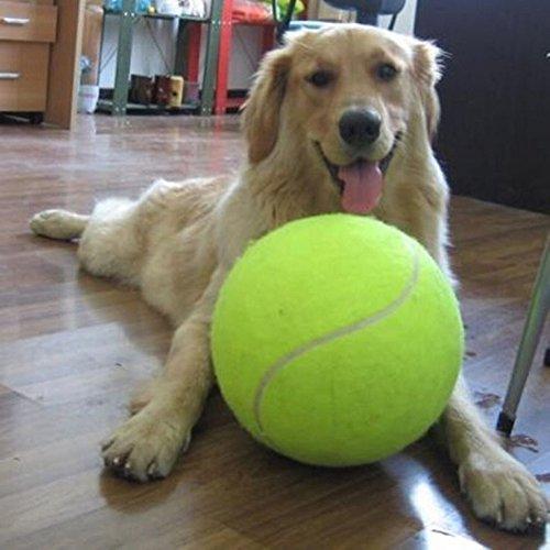 Demiawaking 犬 おもちゃ インフレータブル テニス ボール ペット用品 運動不足 ストレス解消 直径24cm