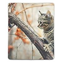 パターンアンチスリップラップトップ PCマウスパッド マウスパッド 光学レーザーマウス 快適 秋の猫 ゲームマウスパッド